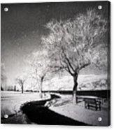 Winter Darkness Acrylic Print