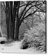Winter Day - Black And White Acrylic Print