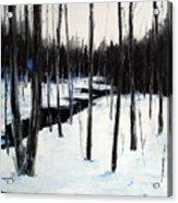 Winter Day Acrylic Print