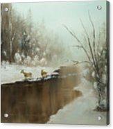 Winter Deer Run Acrylic Print