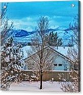 Winter Delight Acrylic Print