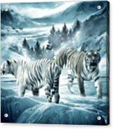 Winter Deuces Acrylic Print by Lourry Legarde