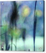 Winter Dreams Abstract Acrylic Print