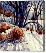 Winter Drifts Acrylic Print