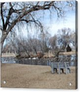 Winter Duck Pond Acrylic Print