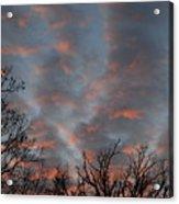Winter Dusk Acrylic Print