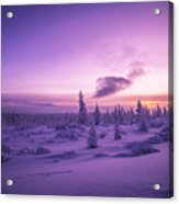 Winter Evening Landscape With Forest, Sunset And Cloudy Sky.  Acrylic Print