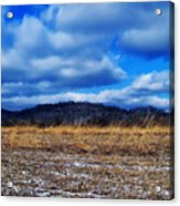 Winter Field Acrylic Print