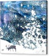 Winter Forest Scene Acrylic Print