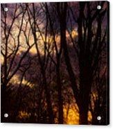 Winter Forest Sunrise Acrylic Print