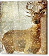 Winter Game Deer Acrylic Print
