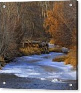 Winter Gold On The Yakima River Acrylic Print