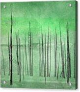 Winter Green  7913green Acrylic Print