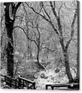 Winter, Ham Burn, Whitley Mill Acrylic Print