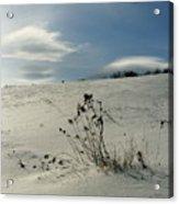 Winter Hill  Acrylic Print