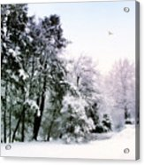 Winter Impressions Acrylic Print