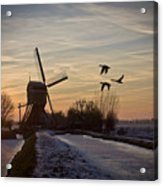 Winter In Holland-1 Acrylic Print