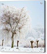 Winter In Holland Acrylic Print