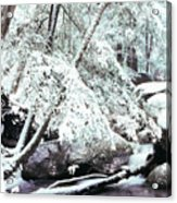 Winter In Shenandoah Acrylic Print by Thomas R Fletcher