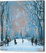 Winter In The City Park Acrylic Print