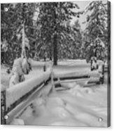 Winter In The Sierra Acrylic Print
