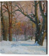 Winter In The Wood Acrylic Print