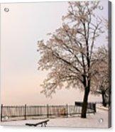 Winter Landscape 1 Acrylic Print