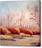 Winter Landscape Dry Creek Bed Acrylic Print