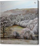 Winter Landscape Acrylic Print by Harry Robertson
