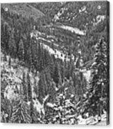 Winter Landscape In Giurgeu Mountains Acrylic Print