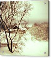 Winter Loneliness Acrylic Print by Jenny Rainbow