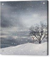 Winter Acrylic Print by Lourry Legarde