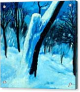 Winter Moonlight And Snow Acrylic Print