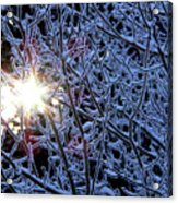 Winter Morning Sunrise Acrylic Print