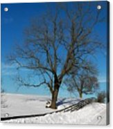 Winter On A Country Road Acrylic Print