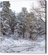 Winter On The Chase Acrylic Print