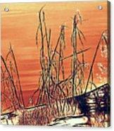 Winter Orange Acrylic Print