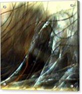 Winter Passage Acrylic Print
