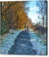 Winter Path In Scotland Acrylic Print