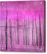 Winter Pink  7913pink Acrylic Print