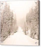 Winter Quiet Acrylic Print