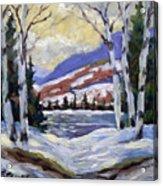 Winter Reflections Acrylic Print