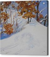 Winter Ridge Acrylic Print