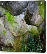 Winter Rock Patterns Acrylic Print