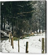 Winter Rural Pathway Acrylic Print