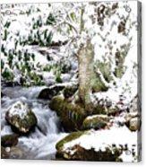 Winter Rushing Stream Acrylic Print
