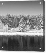 Winter Scene 2 Acrylic Print