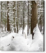 Winter Scene Print Acrylic Print