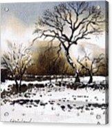 Winter Scene Stainland Acrylic Print