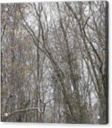 Winter Scenery Acrylic Print